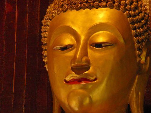 buddha budda thailand