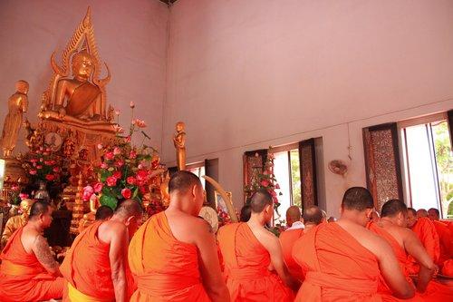 buddhist holy day  monk  buddhism