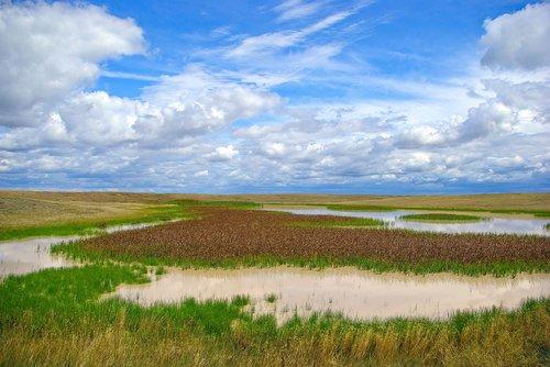 buffalo gap  marsh  wetland