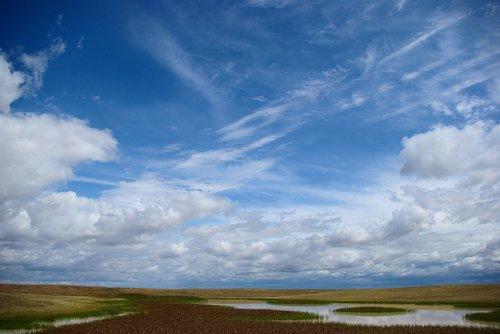 buffalo gap national grassland  marsh  wetland