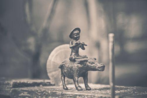 buffalo rider buffalo rider
