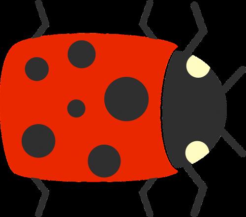 bug cute flat