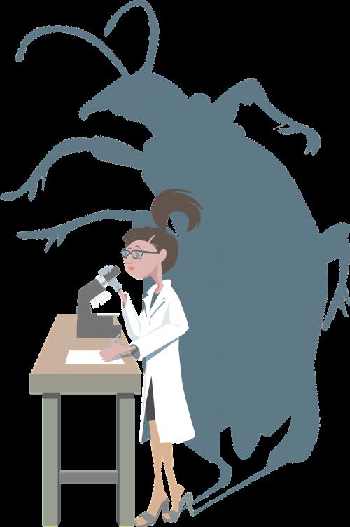 bug research female