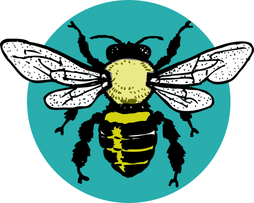 bug hornet bee