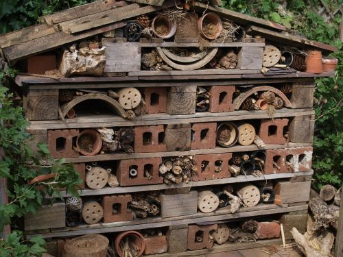 bug hotel garden rubbish