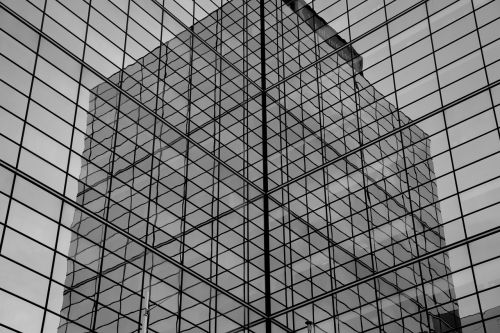 building black and white lines