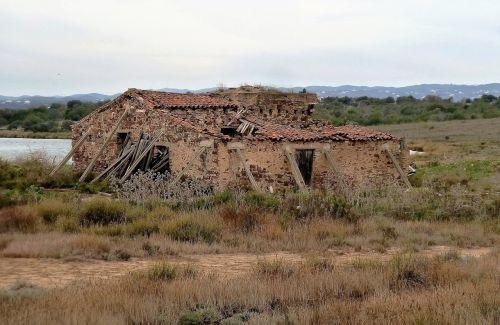 building ruin krot