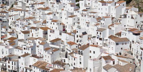 buildings town cityscape