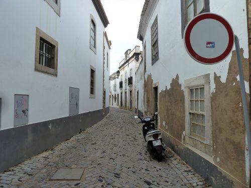 buildings street rose