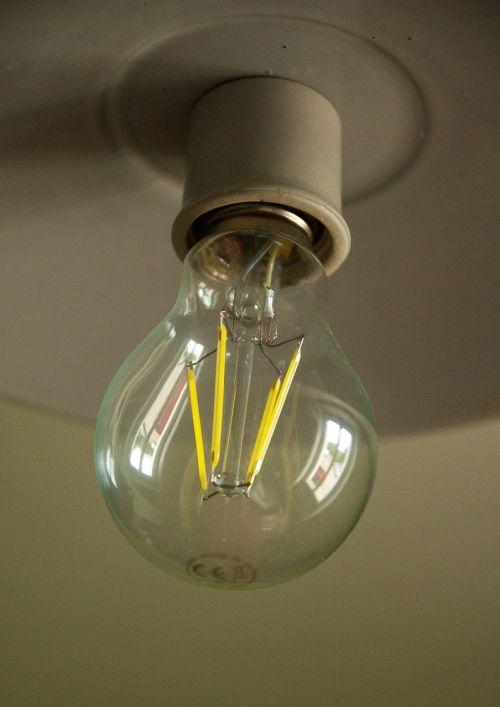 bulb electricity lighting