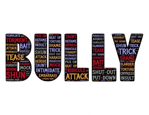 bully attack aggression