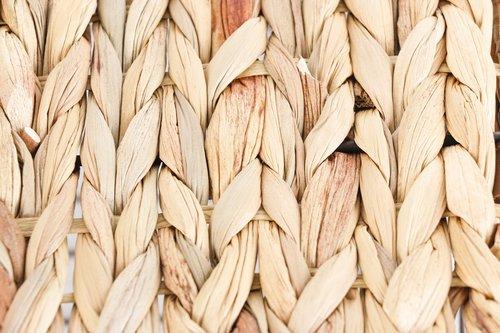 bulrush  rushes  weave