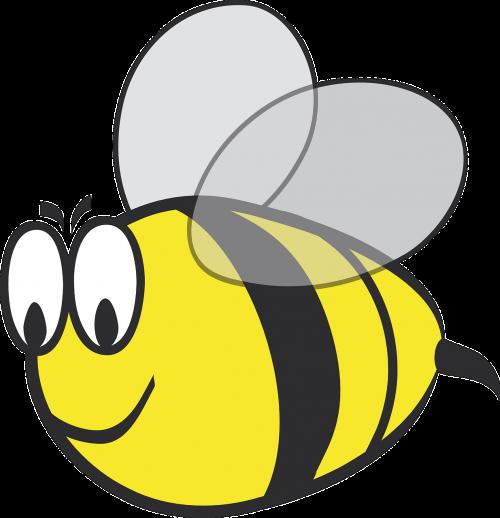 bumblebee bumble-bee bee