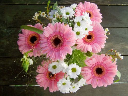 bunch of flowers pink and white flowers gerbera