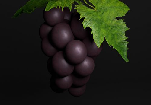 bunch of grapes three-dimensional image vine