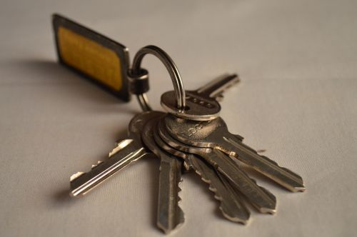 bunch of keys keys key fob