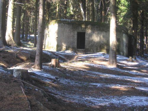 Bunker In The Woods