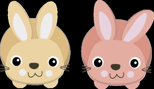 bunnies charts cute