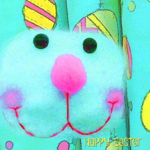 Bunny Rabbit Face