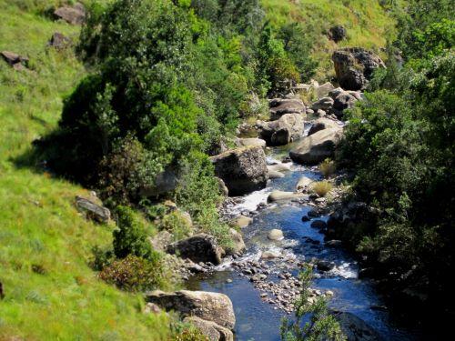 Burbling Mountain Stream