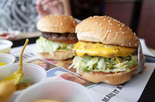 burger hamburger habit