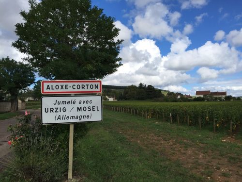 burgundy wine corton