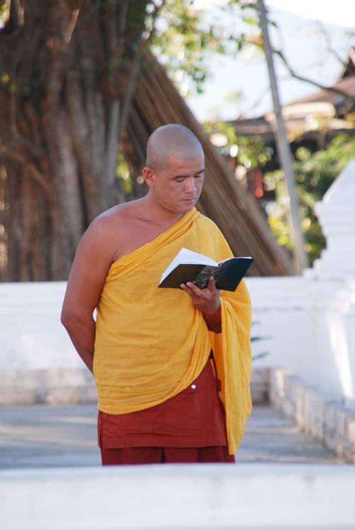burma monk buddhist