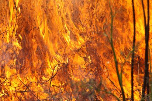 burning grass fire flames