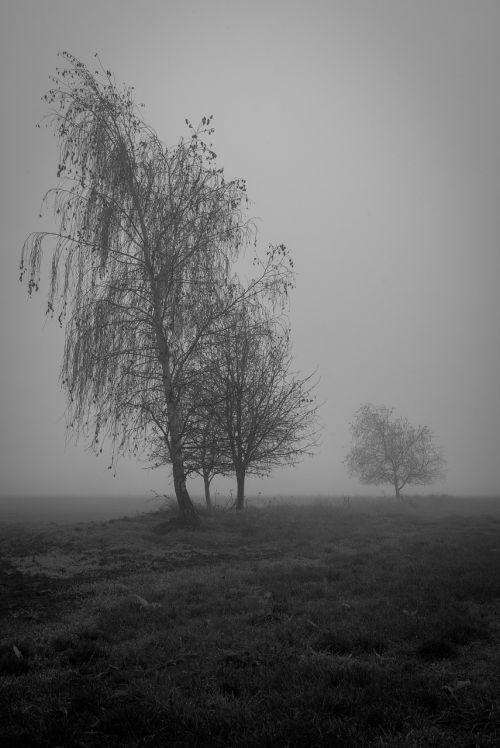 burnout mourning depression