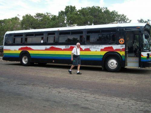 bus vehicle tour bus