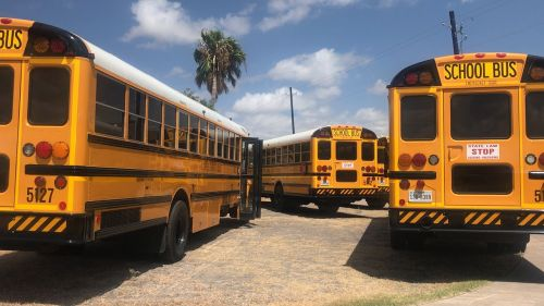 bus school school bus