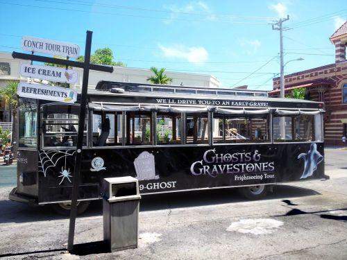 bus city vehicles