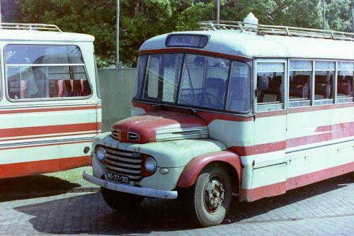 bus service bus age