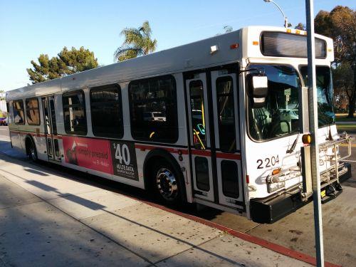 bus public tansportation urban