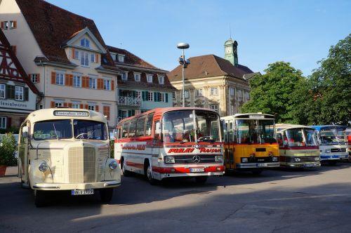 buses bus oldtimer