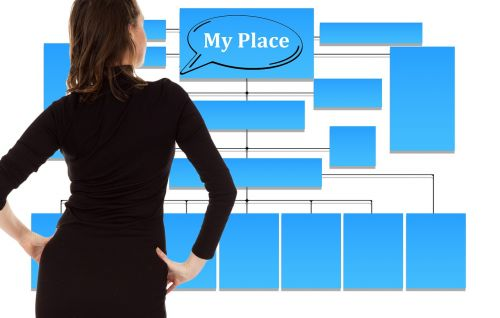 businesswoman organization chart organization