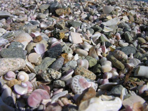 but beach sea