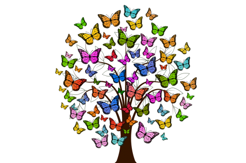 butterflies tree colorful