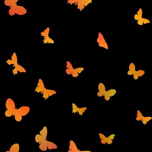 Butterflies Set