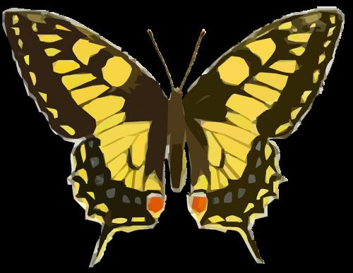 butterfly vintage clip art