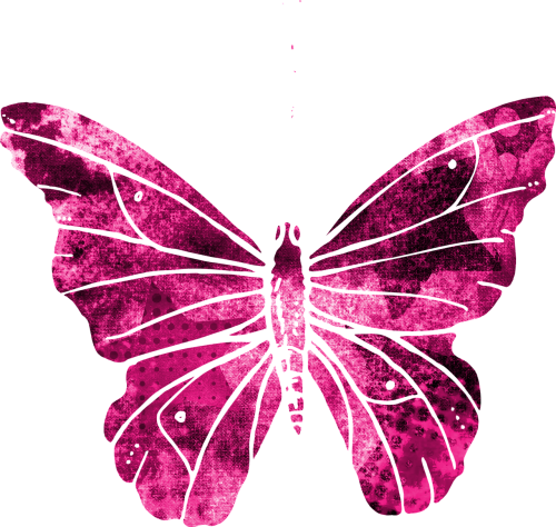 butterfly pink clipart