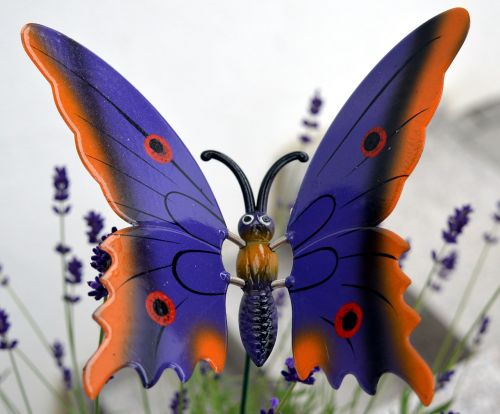 butterfly decoration deco