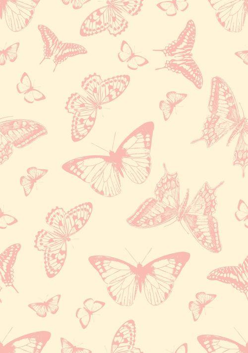 butterfly butterflies vintage