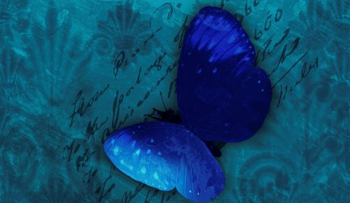 butterfly background blue