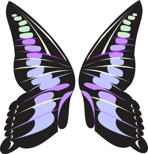 butterfly wings pink