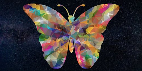 butterfly  insects  galaxy