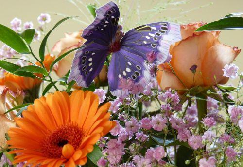 butterfly birthday bouquet gerbera