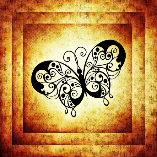 butterfly frame image