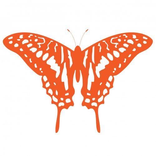 Butterfly Clipart Orange