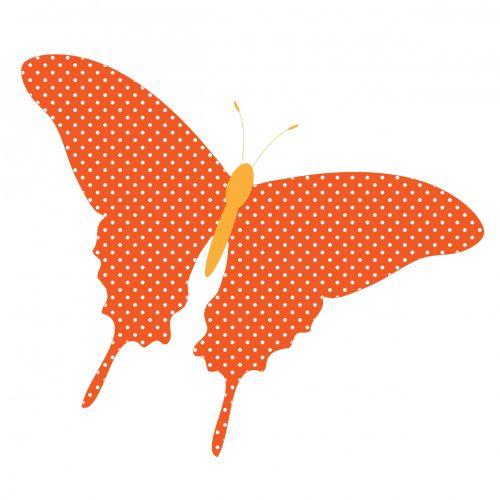 Butterfly Orange Polka Dots